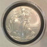 2013 Silver Eagle  - Actual Coin Pictured